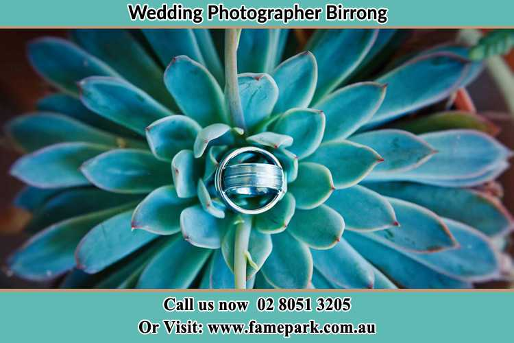 Photo of the wedding ring design at the top of the plant Birrong NSW 2143