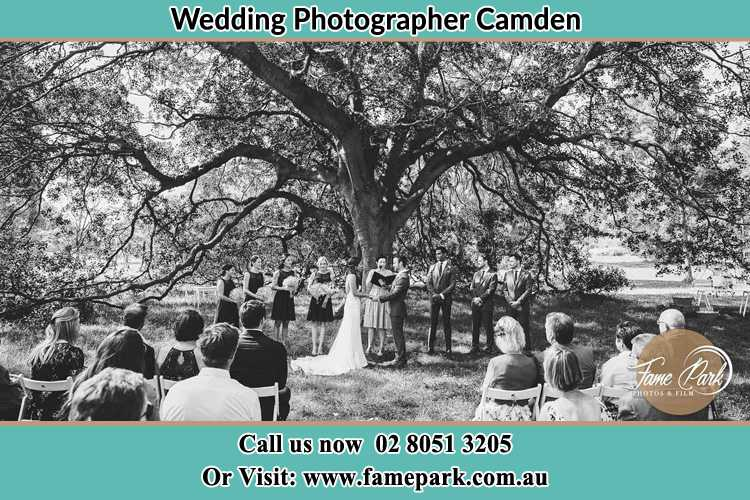 Wedding ceremony photo at the big tree Camden NSW 2570