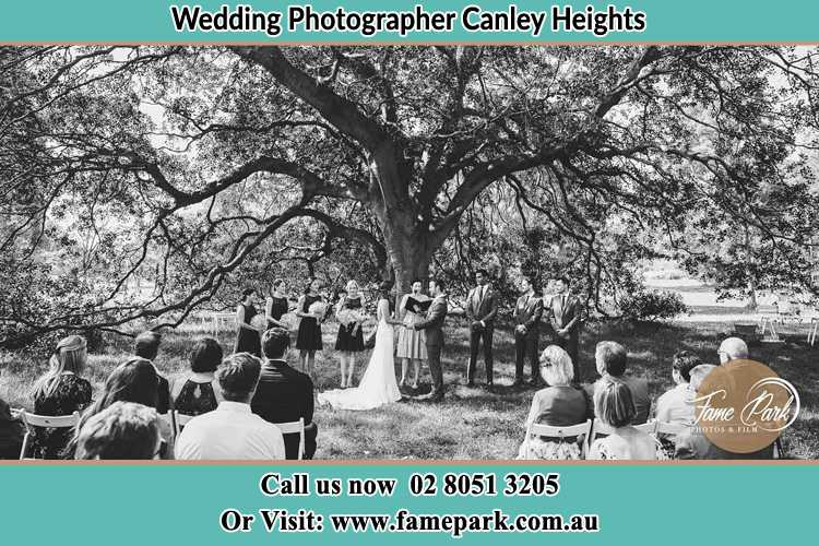 Wedding ceremony under the big tree photo Canley Heights NSW 2166