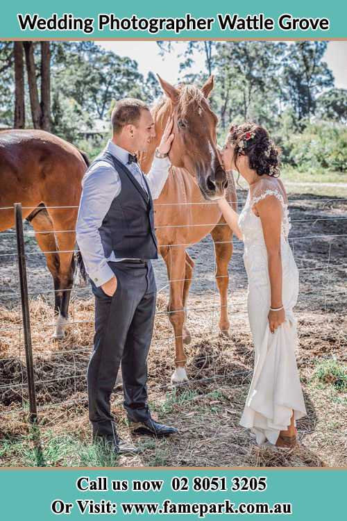 Photo of the Groom and the Bride caressing a horse Wattle Grove NSW 2713